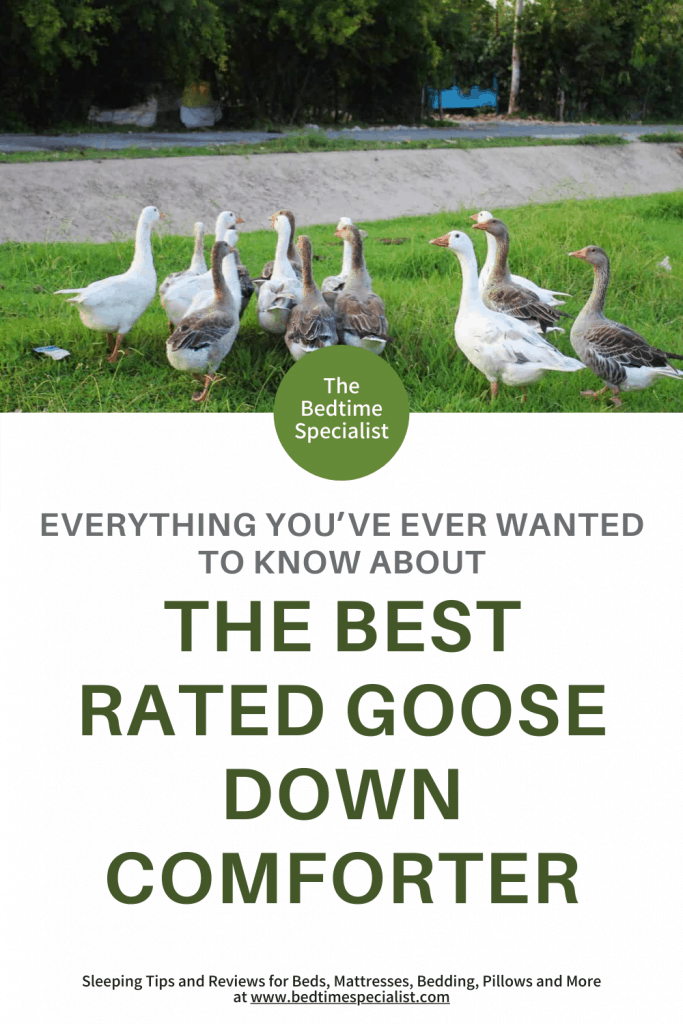 Everything You've Ever Wanted to Know About The Best Rated Goose Down Comforter